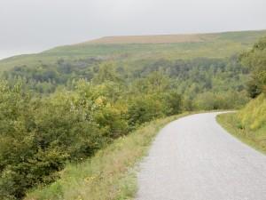 Weg auf der Halde Hoheward