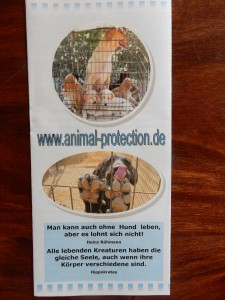 Flyer aegean-dogs - Trödeln für Aegina