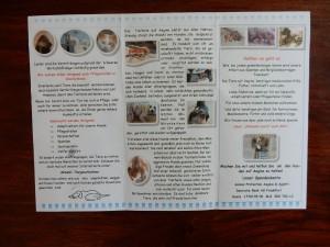 Flyer 2 aegean-dogs - Trödeln für Aegina