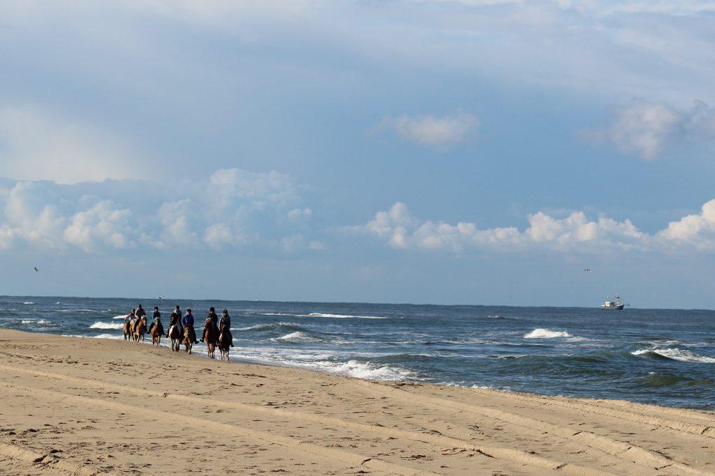 Sie Lieben Es Sich Gegenseitig Am Strand Zu Lecken