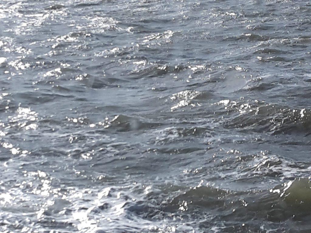 "Sonnig Das Lied ""La Mer"""
