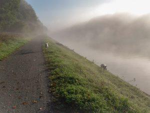 Die Nebelschwaden lichten sich - Dichter Nebel hinter uns